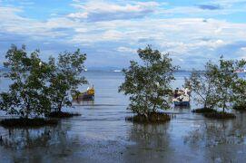 2012暮、マレーシア旅行記2(18)ペナン橋を渡りペナン島へ、河畔のレストランでの夕食