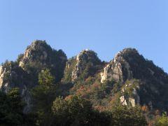 三倉岳に登った。