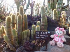 のんびり伊豆高原への旅<3>シャボテン公園