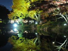 '13 銀座駅&日比谷公園紅葉ライトアップ
