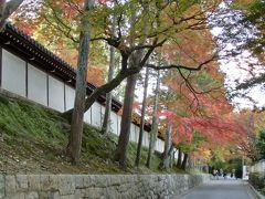 ぷらっと京都 東福寺は紅葉まっ盛り!