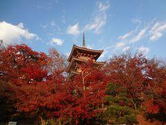 京都一周トレイル 東山コース(伏見稲荷駅~清水山)