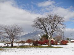 美しい磐梯山を見ながら~猪苗代湖に白鳥を訪ねてみました。