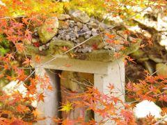 法華山一乗寺の紅葉