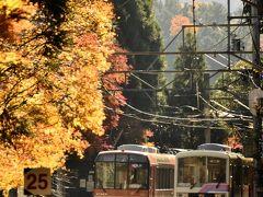 晩秋の叡山電鉄沿線に広がる紅葉を探しに訪れてみた