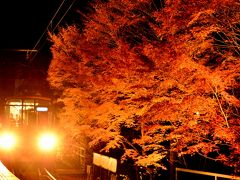 晩秋の叡山電鉄沿線に広がる紅葉のライトアップを見に訪れてみた