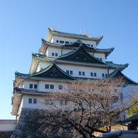 愛知県 犬山城、名古屋城
