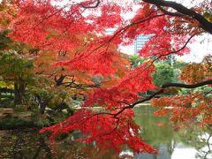 2013年 東京・日比谷公園の紅葉と宝塚観劇
