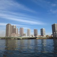 <師走の築地市場散策>世界最大の魚市場でちょっぴり早めのお正月準備!?