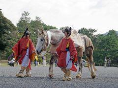 2013京都旅行?馬と紅葉と時代祭を訪ねる
