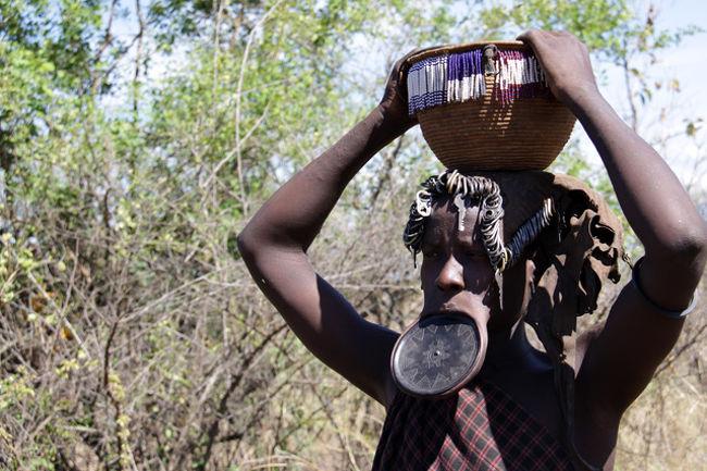 長い間行きたい国の候補の一つにしていた南エチオピアの秘境に行って来た。驚異の民族に出会う旅。人類揺籃の地と云われ、命みなぎる少数民族に出会う旅である。エチオピアと云えば南米の国と思われる人がいるが、アフリカである。西にスーダン、東にソマリア、南にケニアに囲まれたアフリカ最古の独立国である。国土は日本の約3倍で人口は約8,700万人である。首都はアディスアベバ。よく知られているのは「コーヒー原産の地」の一つと云うことや1,964年東京オリンピックマラソンで優勝したアベベ選手など陸上の長距離王国である。オモロ族、アムハラ族など約80の民族で構成されており、首都のアジスアベバから四輪駆動車で5-600Km南下したケニア国境に近いエチオピア秘境の地ハマル族やムルシ族など8つの部族を訪問する旅である。中でも一度写真を見たら忘れられないムルシ族の風貌・姿はこの目で見て確認し写真に撮ってみたいと思っていた。何しろエチオピアの秘境・僻地でありツアーに参加する物好きも少なく催行にも時間がかかったが、今回やっと実現の機会を得た。百聞は一見に如かず、其処には現代人の我々には想像を越える驚く少数民族の世界があった。<br />今回も新しい発見・驚き・感動があった。・・!<br />やはり旅は楽しい!<br /><br />詳細は 世界旅行記 ★旅いつまでも・・<br />http://yoshiokan.5.pro.tok2.com/ethio/nori183eth.html<br /><br /><br />