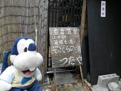 グーちゃん、忘年合宿で宮ノ下温泉へ行く!(そこくらの湯で完全昇天!編)