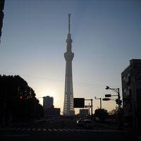 東京プチ旅行