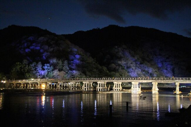 嵯峨野の魅力を代表する「水と竹」という自然の風物や、歴史的な文化遺産を舞台に、情緒豊かな露地行灯でつなぐ「京都嵐山花灯路」が、今年も12月14日から23日まで開催されます。<br /><br />行く秋の名残をとどめるこの日の嵯峨野一帯は、華やかにライトアップされた舞台を縫うようにほのかな露地行灯がともされ、情緒あふれる空間を演出しています。<br /><br />また、主人公にそっと寄りそうように、華道各流派によるいけばな作品が配置され、彩りを与えています。<br /><br />天気予報がこの冬一番の冷え込みになることを伝えるこの日、凛とした寒気の中、京都の風物詩としてすっかり定着した「京都嵐山花灯路」を訪れました。<br /><br />9月中旬の台風18号により、増水した桂川の水が渡月橋を襲うテレビニュースの映像にショックを受けたのは記憶に新しいところですが、その渡月橋も鮮やかにライトアップされ、山と水面を結ぶ光の帯としてきれいな姿を見せています。<br /><br />同時に、桂川の氾濫により甚大な浸水被害を受けた嵐山一帯の老舗旅館や料理屋さんなどもすっかり立ち直り、活気を取り戻されています。