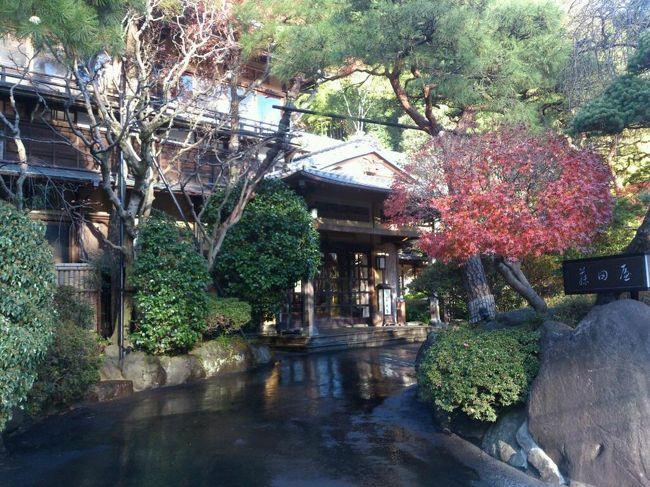 今年2回目の湯河原温泉1泊旅行です。<br />今年夏に別の旅館に泊まってアンケートに答えたら1万円の割引券がもらえたのでそれを使って純日本旅館で温泉とお料理を楽しみました。<br />二日目はミニハイキングも。 <br />