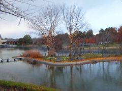 なばなの里イルミ紀行(06) なばなの里に出発し、ベゴニア・ガーデン入館まで昼間の風景。