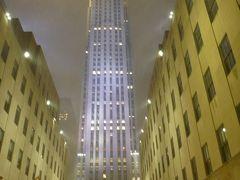 最後のニューヨーク1泊旅行:大雪のマンハッタン