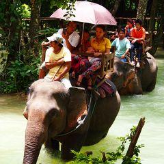 悠久の古都で見つけた懐古情調 in Luang Prabang★2013 10 8日目【LPQ:セー滝】