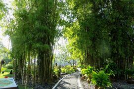 2013春、インドネシア旅行記2(4)バリ島、ヌサドゥアで泊ったホテル、ホテルの庭園散策