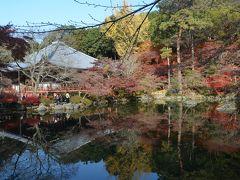 京都・福井 紅葉を求めて4日間(7) 四日目 醍醐寺ー大徳寺