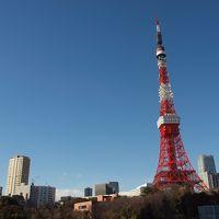 そうだ、散歩に行こう。 「今こそ、東京タワーを愛でよう!」の巻