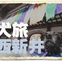 犬旅 ~西新井~