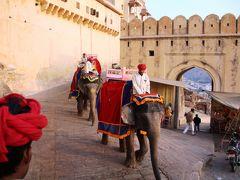 アンべール城に象に乗って登城