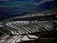 SaPa 少数民族の村々 8マチャ村 棚田が美しい黒モン族の村