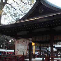 今年も行ってきました、大宮氷川神社
