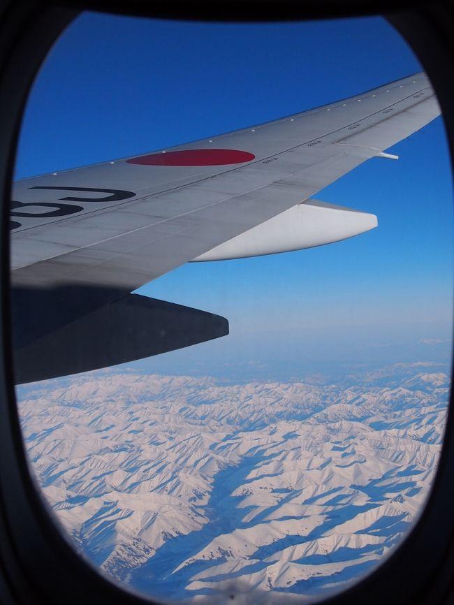 ウィーンで始まった2013年はウィーンで終わり。まさか一年に3度もウィーンへ行くとは思わなかった一年前(笑)<br /><br />JAL特典航空券の旅&復路はJALさんからお年玉(インボラアップグレードでビジネスクラス)頂きました!<br /><br />空港内のwifi情報も少し<br /><br />往路:<br />成田でJALサクララウンジ利用、JALプレミアムエコノミー利用<br />フランクフルトでルフトハンザ航空ラウンジ利用、オーストリア航空エコノミークラス利用<br /><br />復路:<br />ウィーンでオーストリア航空ラウンジ利用、オーストリア航空エコノミークラス利用<br />フランクフルトでJALサクララウンジ利用、JALビジネスクラス利用<br /><br />今回も現地集合、現地解散=ウィーンのホテル集合、ウィーンミッテ駅解散