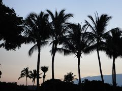初めてのハワイ島 のんびり旅♪6~7日目
