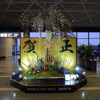 オーロラツアー 2013/2014 1日目前半 (成田~バンクーバー~ホワイトホース)