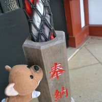 まったり網代。和田木神社で初詣~網代漁港