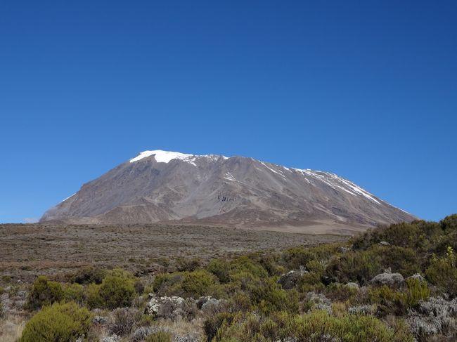 キリマンジャロ登山の構想を練り始めたのが3年前。<br />キリマンジャロ登山の実行を決意したのが1年前。<br />練習期間が8か月。<br /><br />ついにきました。このときが・・・。<br /><br /><br />というわけで、キリマンジャロ登山へ行って参りました。<br /><br /><br /><br />まずは・・<br /><br />反省<br />登れるか登れないかの勝負の分かれ目は、旅立つ前から決まっていたのだと反省しきりです。<br />そういう自覚がまったくなかったのです。<br />現地に行ってからが勝負だと思っていたのです。<br />結果的には、アフリカ最高点のウフルピーク(5895m)に立つことができましたが、準備不足を痛感しました。<br />もちろん、まともに登山を始めたのが8カ月前の僕にとって、てっぺんに立てただけでも幸運なことですが・・。<br />登頂確率を上げるためにもっとやれることがあったんだと今になって痛感しています。<br />「勝ちに不思議の勝ちあり。負けに不思議の負けなし。」<br /><br /><br />感想<br />この旅は、たった10日間の旅じゃなかった。<br />構想2年、計画4カ月、練習期間8カ月。<br />練習期間中に登山した回数 合計13回。<br />(内、2回は海外の4000m級の山)<br />とんでもないエネルギーを使ったものだ。<br />そして、いい旅をするために準備をするっていうことが、どれほど重要か分かった。<br />いろいろな旅をしてきましたが、自分でユニークな旅作りができたときにすごく満足をしています。<br />旅をする前までは、キリマンジャロに登って、サファリツアーに行くというステレオタイプな旅だと思っていました。<br />(キリマンジャロ登山自体ステレオタイプではなく、かなり特殊ですが、僕が言いたいのは、日本の旅行会社が企画するキリマンジャロ登山ツアーと僕が個人手配した旅行の中身は大して変わらないということです。そうい意味でステレオタイプ。)<br />考えてみれば、キリマンジャロ登山をする前に大抵の人は数多くの準備をするものです。<br />いろいろな山に行って足腰を鍛えたり、高山病に対策に低酸素室を利用したり、寒さ対策に新しいシュラフを買ったりと。<br />そういう準備の仕方は、みんな違うのです。<br />勝手に差が出てきてしまいます。<br />しかも、ものすごい大差です。<br />だから、キリマンジャロ登山はステレオタイプになりようがない。<br />最初は、ツアー企画と同じでユニークさが足りないと少し不満でしたが、実は唯一無二のすばらしい旅だったんだと思っています。<br /><br /><br />旅行日程<br />12月27日:成田発 (カタール経由)<br />12月28日:キリマンジャロ空港着 アルーシャ泊<br />12月29日:<登山初日> マラングゲート→マンダラハット泊<br />12月30日:<登山2日目> マンダラハット→ホロンボハット泊<br />12月31日:<登山3日目> ホロンボハット→キボハット泊<br />1月1日:<登山4日目> キボハット→登頂(ウフルピーク)→キボハット→ホロンボハット泊<br />1月2日:<登山5日目> ホロンボハット→マラングゲート アルーシャ泊<br />1月3日:<サファリツアー> アルーシャ→ンゴロンゴロ <br />1月4日:<サファリツアー> ンゴロンゴロ→マニャラ→キリマンジャロ空港発<br />1月5日:成田着 (カタール経由)<br />