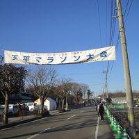 第8回下野天平マラソンに参加してきました