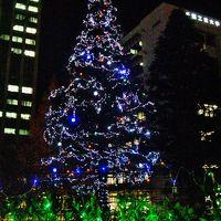 Christmas Illumination (千葉工業大学構内)点灯 ☆津田沼からの帰り道