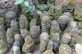 2013春、インドネシア旅行記2(11)バリ島、ウブド芸術村散策