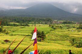 2013春、インドネシア旅行記2(18)バリの世界文化遺産・ジャティルイ村のライステラス