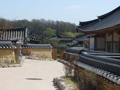 2013春、韓国旅行記26(10):4月9日(8):慶州、校洞村、崔氏古宅、重要民俗資料碑、染井吉野、花蘇芳