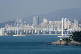 2013春、韓国旅行記26(15):4月9日(13):鎮海から釜山へ、海が見える丘の染井吉野、海雲台ビーチ