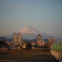 東海道歩き旅(藤枝宿~府中宿)