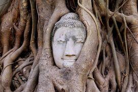2013冬、タイ王国旅行記2(23)アユタヤ、アユタヤ遺跡、ワット・マハタート
