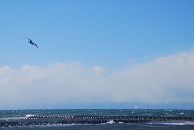 今まで「暑い国大好き!」「寒いの苦手!」<br />で通して来た私でしたが<br />何の心変わりか2014年初の旅行で<br />雪国新潟に行って参りました。<br /><br />今回行ってみて分かった事は<br />「食わず嫌いってもったいない」という事。(今更ですけど)<br />真っ白な景色と冷たく澄んだ空気に<br />すっかり心を奪われて帰って来ました!