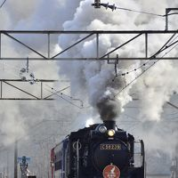東北に復活する蒸気機関車「SL銀河」、C58-239の試運転を追いかけて