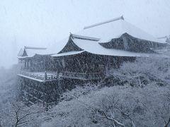 京都を歩く(186) 雪の京都へ 東山雪景色