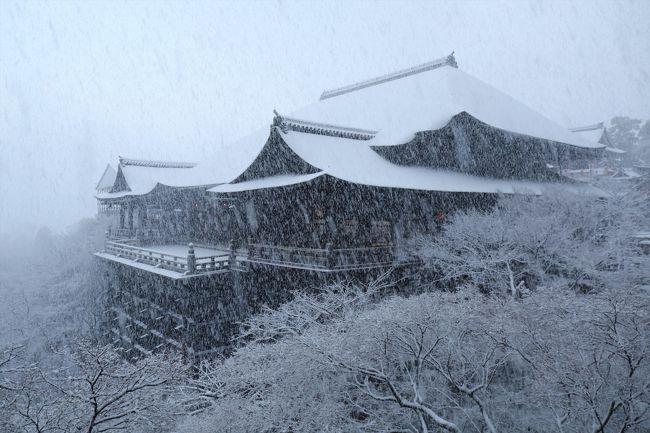 京都の街に雪が積もった!<br />年に数回しかないこの好機を逃さずに行ってきました。<br /><br />訪れたのは東山エリアです。<br />清水寺→産寧坂→八坂の塔→安井金毘羅宮→八坂神社→円山公園→知恩院→祇園白川と歩いてきました。<br /><br />