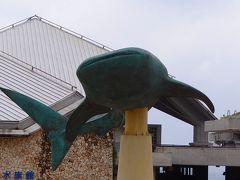 避寒旅行(87)・・・沖縄本島 海洋博公園<01> 美ら海水族館 上巻