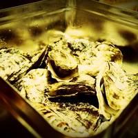 一人ぷらっと広島 牡蠣三昧の旅1*・゜・*そうだ、牡蠣食べに行こう*・゜・*