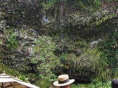 ハワイ3島周遊、(カウアイ島北周りドライブ、シダの洞窟)
