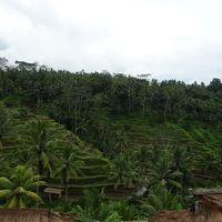 初めての年越し旅行はインドネシアで!~その2~